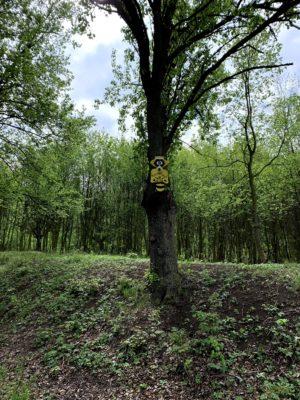 Víkendové müsli – zastav se